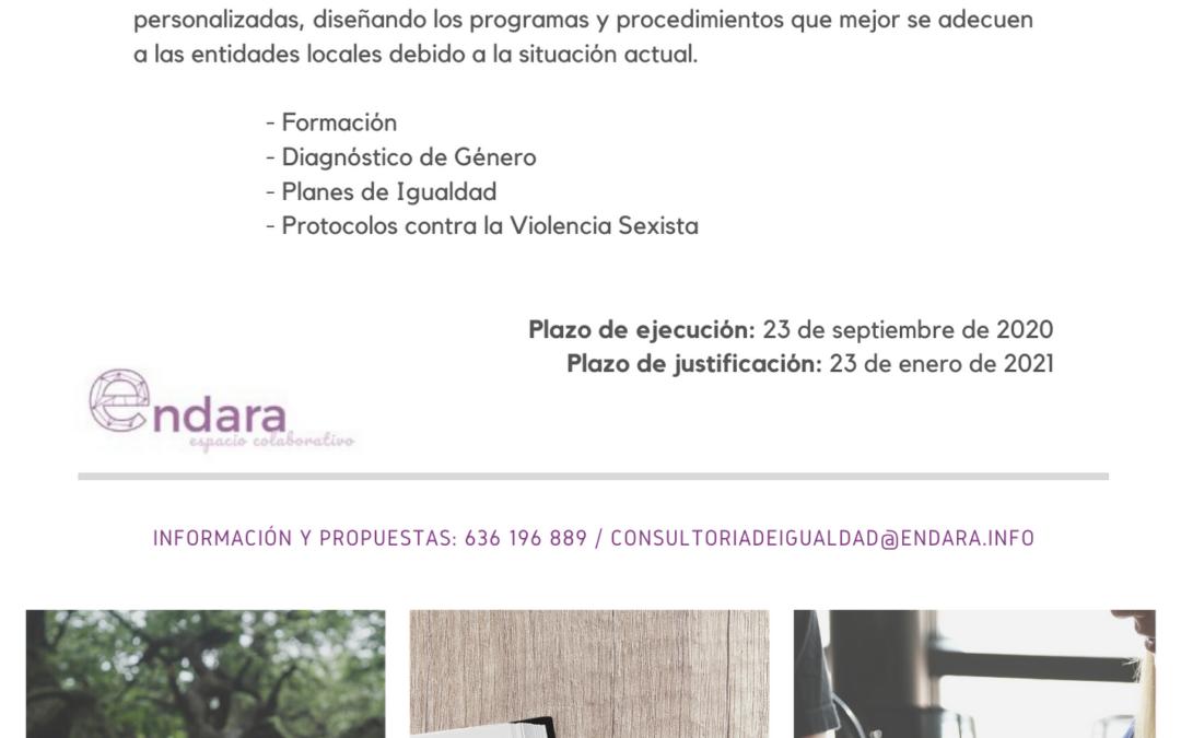 Nuevas fechas de ejecución y justificación para los fondos del Pacto de Estado contra la Violencia de Género 2019